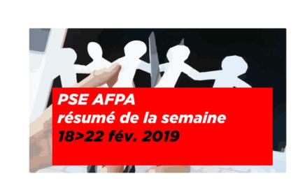 PSE Afpa